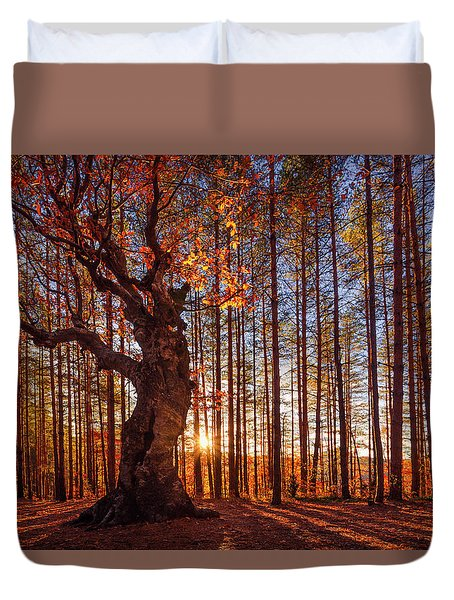 The King Of The Trees Duvet Cover