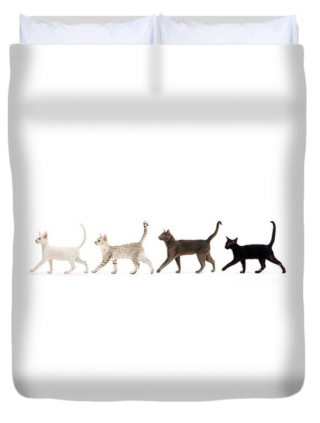 Duvet Cover featuring the photograph The Kits Parade - Four by Warren Photographic