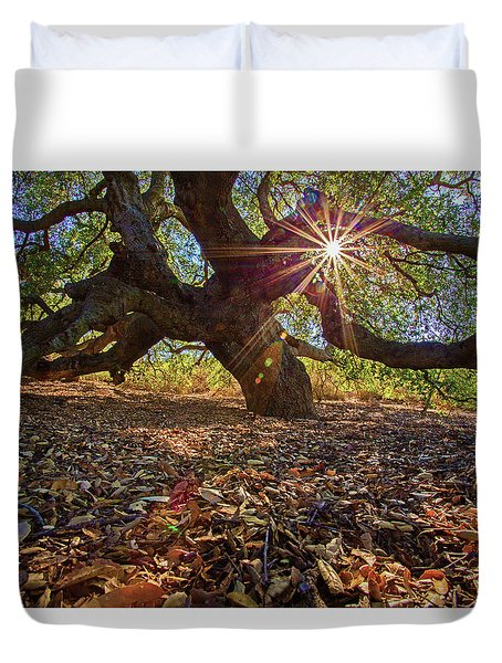 The Old Oak Duvet Cover