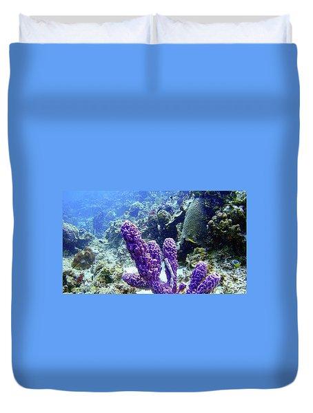 The Purple Sponge Duvet Cover