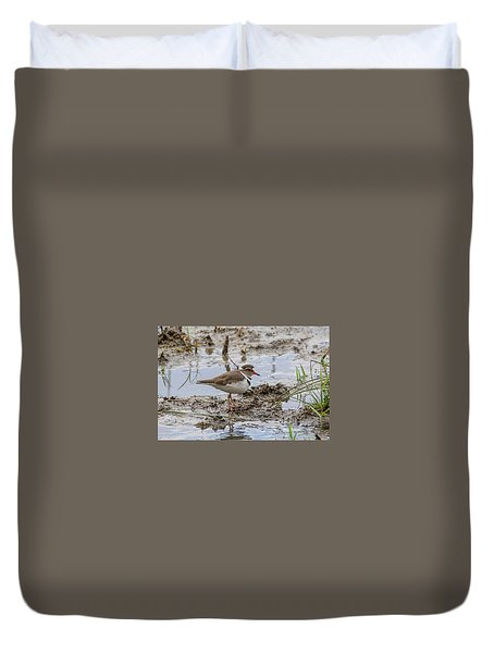 Three-banded Plover Duvet Cover