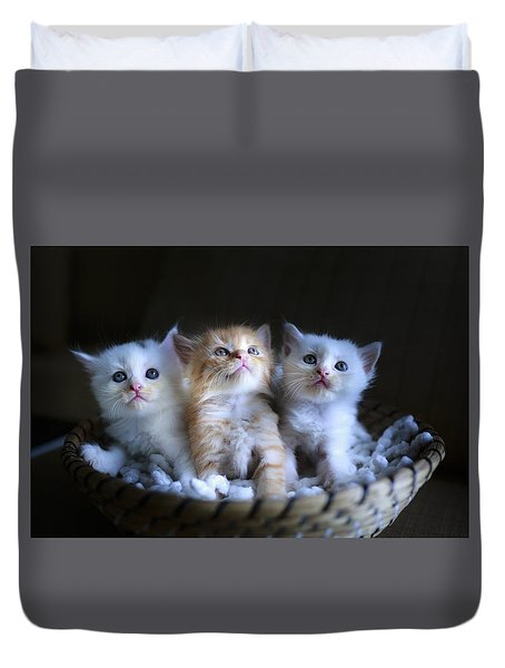 Three Little Kitties Duvet Cover
