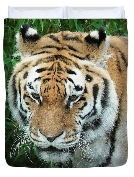 tigris tigris - Supporting World Wide Fund For Nature Duvet Cover
