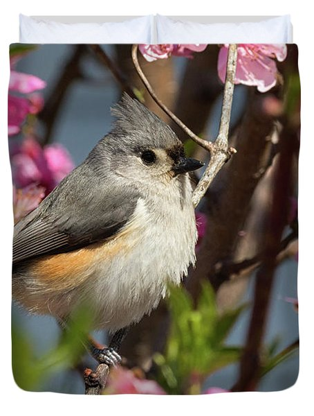 Titmouse And Peach Blossoms Duvet Cover