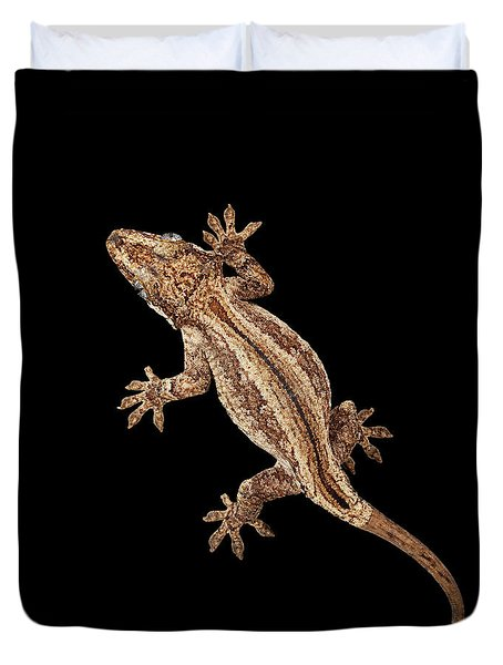 Top View Of Gargoyle Gecko, Rhacodactylus Auriculatus Staring Isolated On Black Background. Native T Duvet Cover