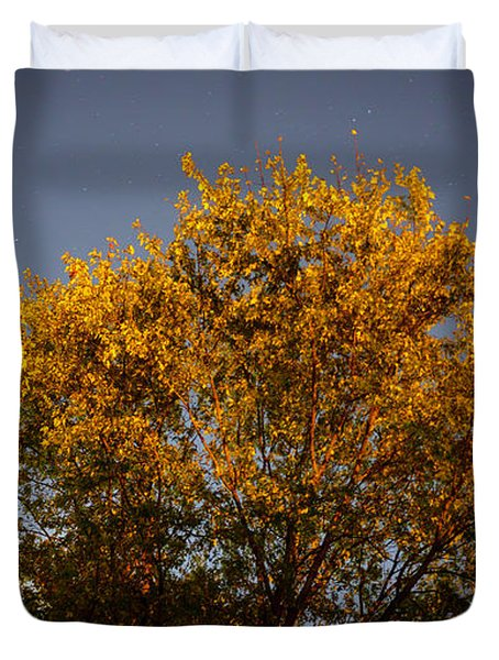 Tree And Stars Wide Duvet Cover