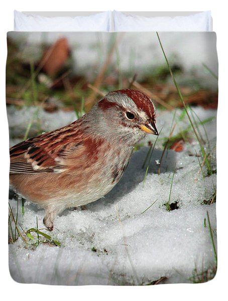 Tree Sparrow In Snow Duvet Cover