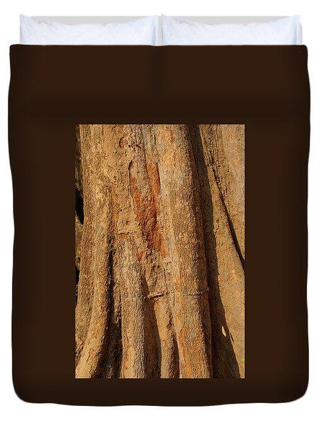 Tree Trunk And Bark Of Chambak Duvet Cover