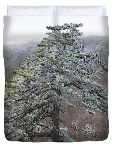 Tree With Hoarfrost Duvet Cover