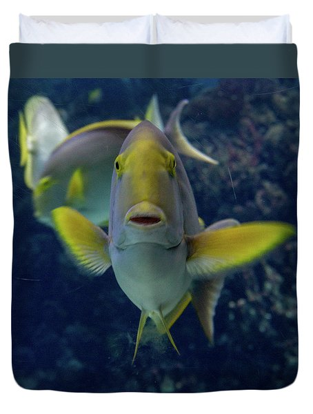 Duvet Cover featuring the photograph Tropical Fish Poses. by Anjo Ten Kate