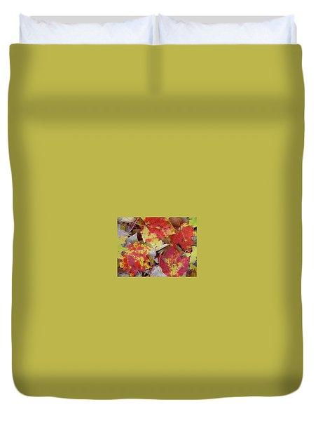 True Autumn Colors Duvet Cover