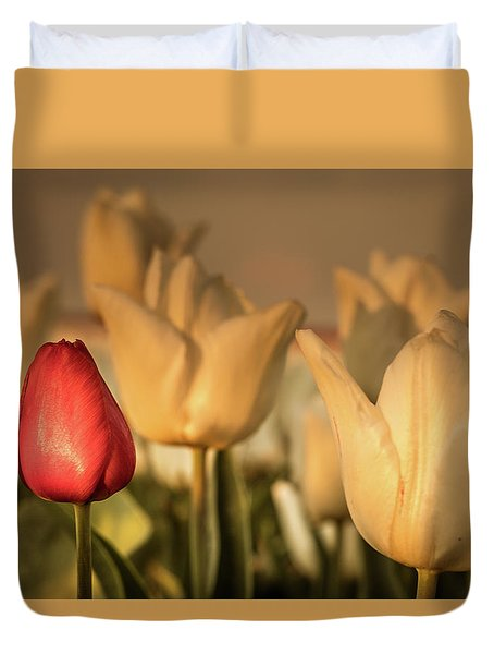 Duvet Cover featuring the photograph Tulip Field by Anjo ten Kate