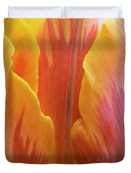 Tulip Prinses Irene Flower Close Up Duvet Cover
