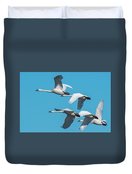 Tundra Swans In Flight Duvet Cover