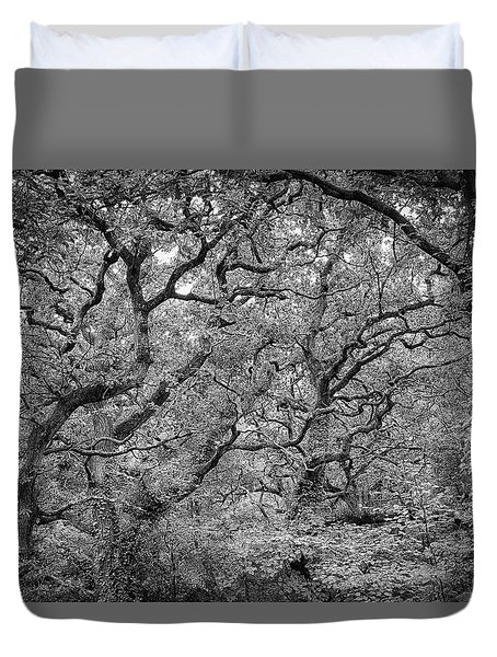 Twisted Forest Duvet Cover