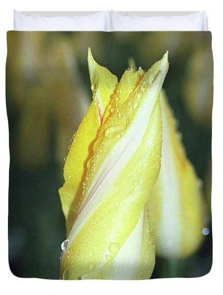 Twisted Yellow Tulip Duvet Cover