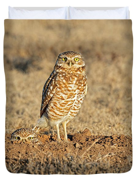 Two Burrowing Owls  Duvet Cover