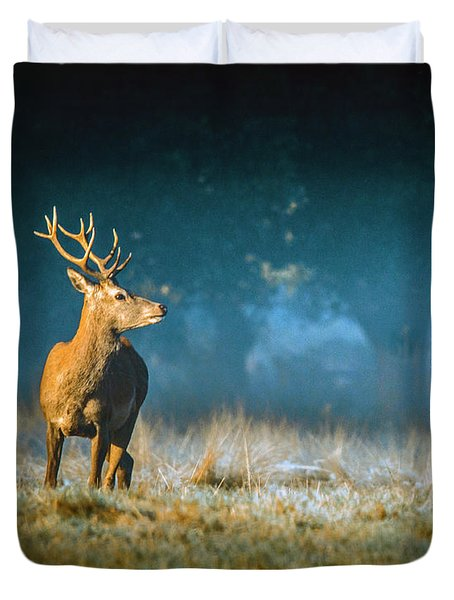Two Stags Duvet Cover