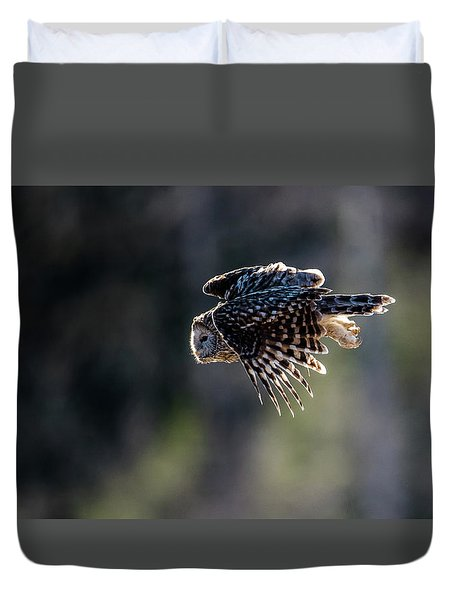 Ural Owl Flying Against The Light To Catch A Prey  Duvet Cover