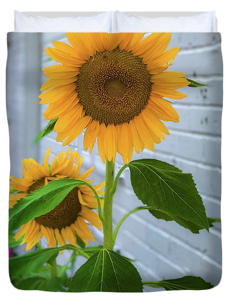 Urban Sunflower Duvet Cover