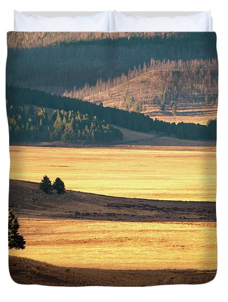 Valles Caldera Detail Duvet Cover