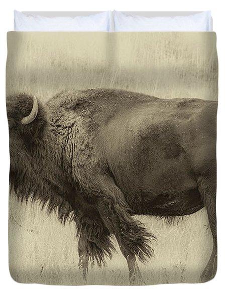 Vintage Bison I Duvet Cover