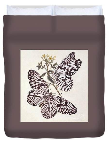 Vintage Illustration Of A Pair Of Idea Tree Nymphs  Duvet Cover