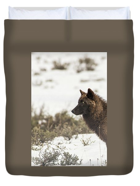 Duvet Cover featuring the photograph W11 by Joshua Able's Wildlife