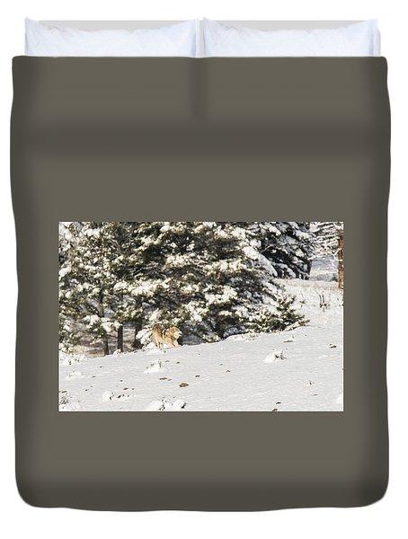 W14 Duvet Cover