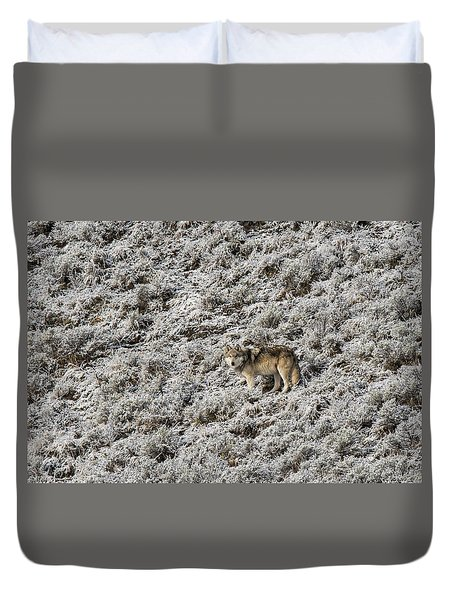 Duvet Cover featuring the photograph W17 by Joshua Able's Wildlife