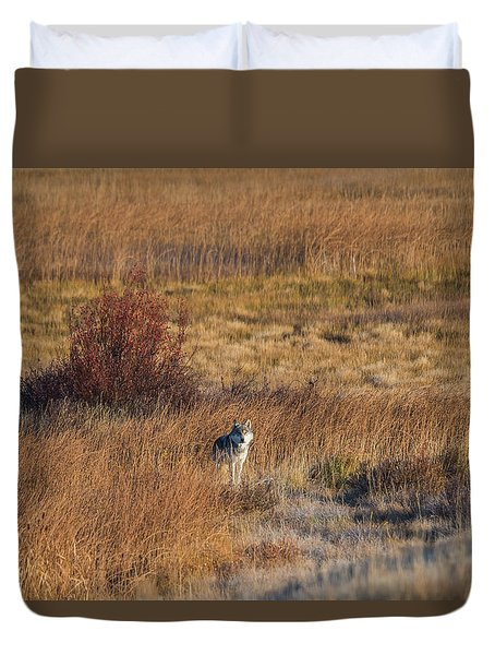 Duvet Cover featuring the photograph W2 by Joshua Able's Wildlife