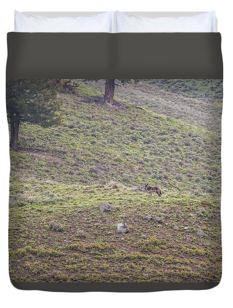 Duvet Cover featuring the photograph W25 by Joshua Able's Wildlife