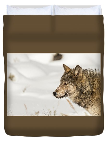 Duvet Cover featuring the photograph W37 by Joshua Able's Wildlife