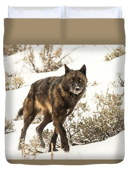 Duvet Cover featuring the photograph W38 by Joshua Able's Wildlife