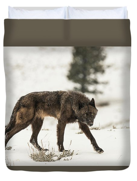Duvet Cover featuring the photograph W42 by Joshua Able's Wildlife