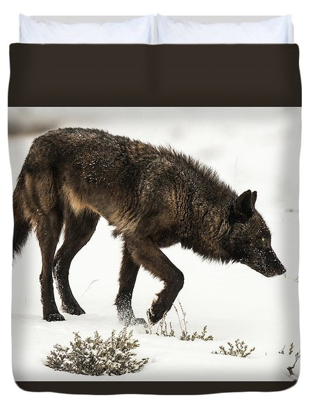 Duvet Cover featuring the photograph W47 by Joshua Able's Wildlife