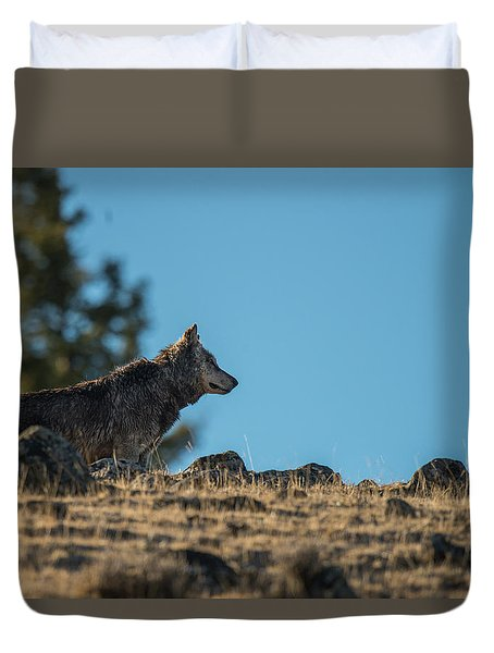 Duvet Cover featuring the photograph W61 by Joshua Able's Wildlife