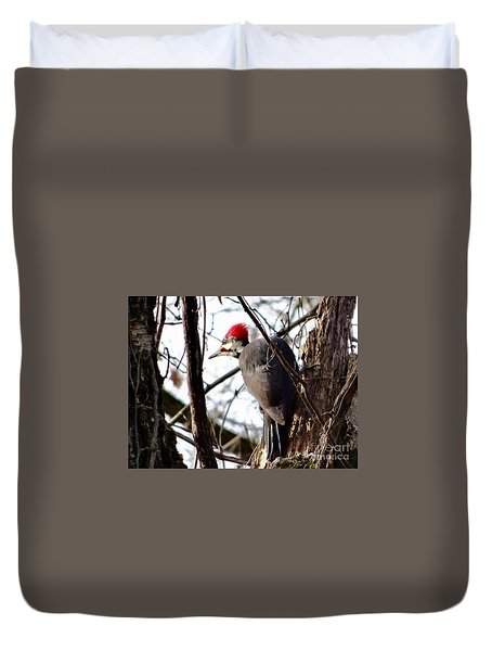 Warypileated Duvet Cover