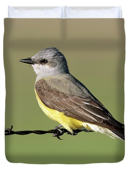 Western Kingbird On Barb Wire Duvet Cover