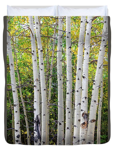 Duvet Cover featuring the photograph White Bark Golden Forest by James BO Insogna