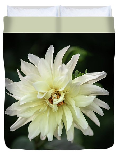 Duvet Cover featuring the photograph White Dahlia Beauty by Dale Kincaid