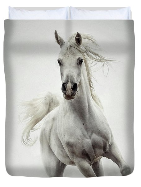 Duvet Cover featuring the photograph White Horse Running In Winter Mist by Dimitar Hristov