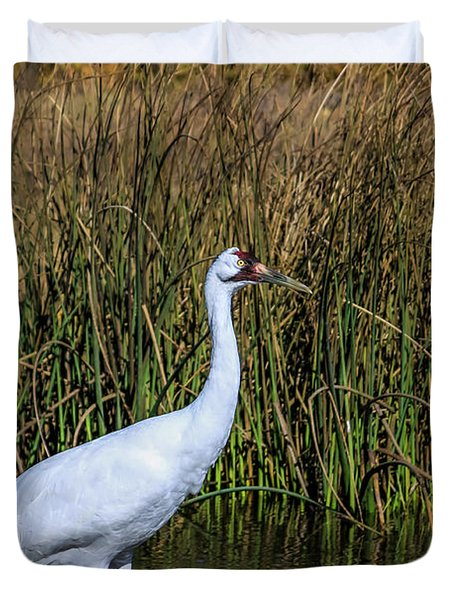 Whooping Crane In Pond Duvet Cover