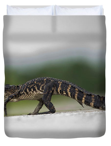 Why Did The Gator Cross The Road? Duvet Cover