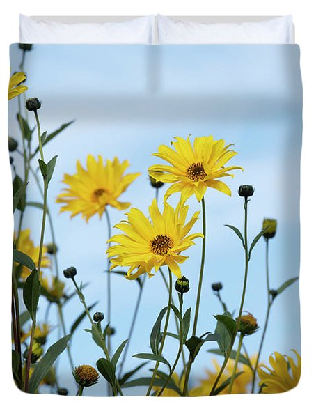 Willow Leaved Sunflower Duvet Cover