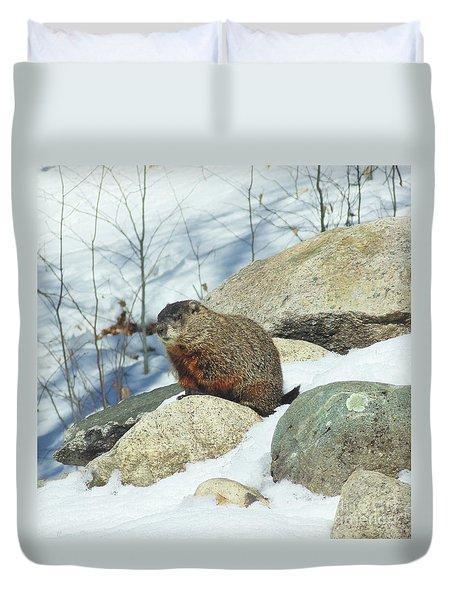 Winter Groundhog Duvet Cover