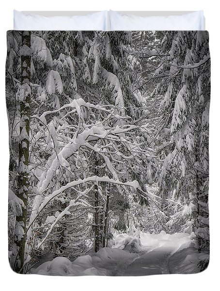 Duvet Cover featuring the photograph Winter In The Forest by Edmund Nagele