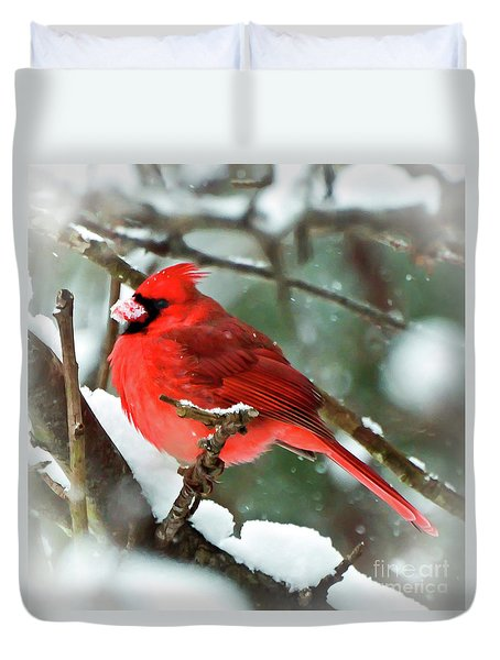 Winter Red Bird - Male Northern Cardinal With A Snow Beak Duvet Cover