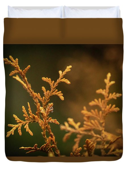 Winter's Hedges Duvet Cover