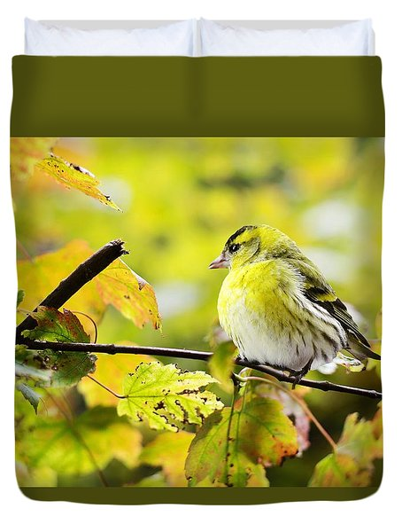Duvet Cover featuring the photograph Yellow Bird by Top Wallpapers